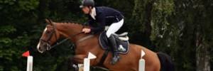 骑手和马匹训练